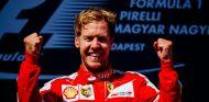 Vettel celebra su victoria en Hungría - LaF1.es