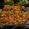El otoño puede afectar a tu coche y a la conducción más de lo que parece - SoyMotor.com