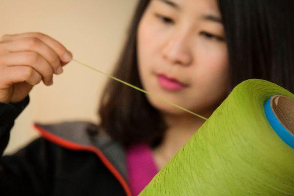 bamboo-3_0.jpg