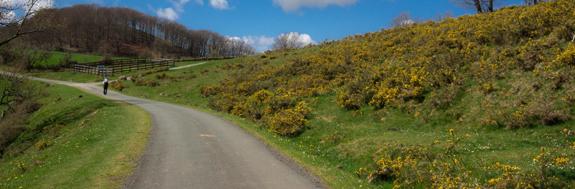 picture-6.route-napoleon.jpg