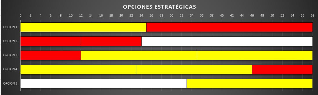 opciones_estrategicas_11.png
