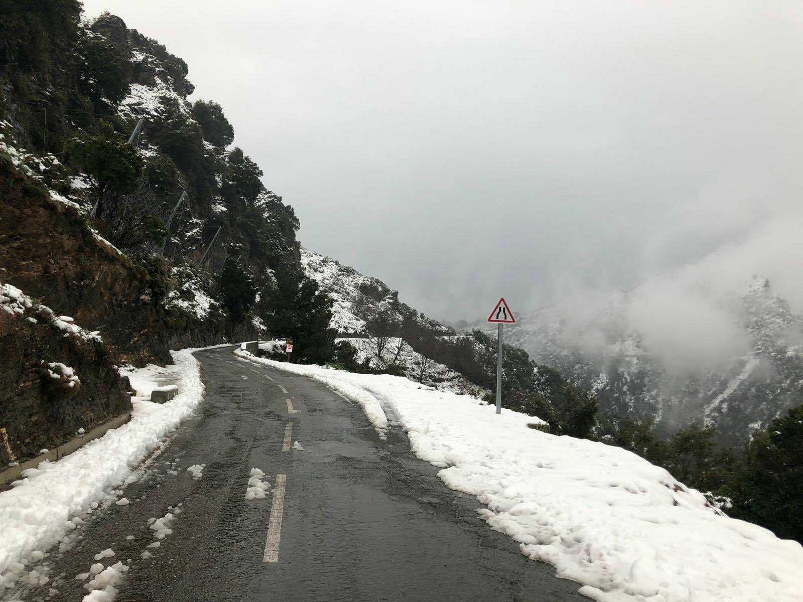 rally-corcega-2019-soymotor.jpg
