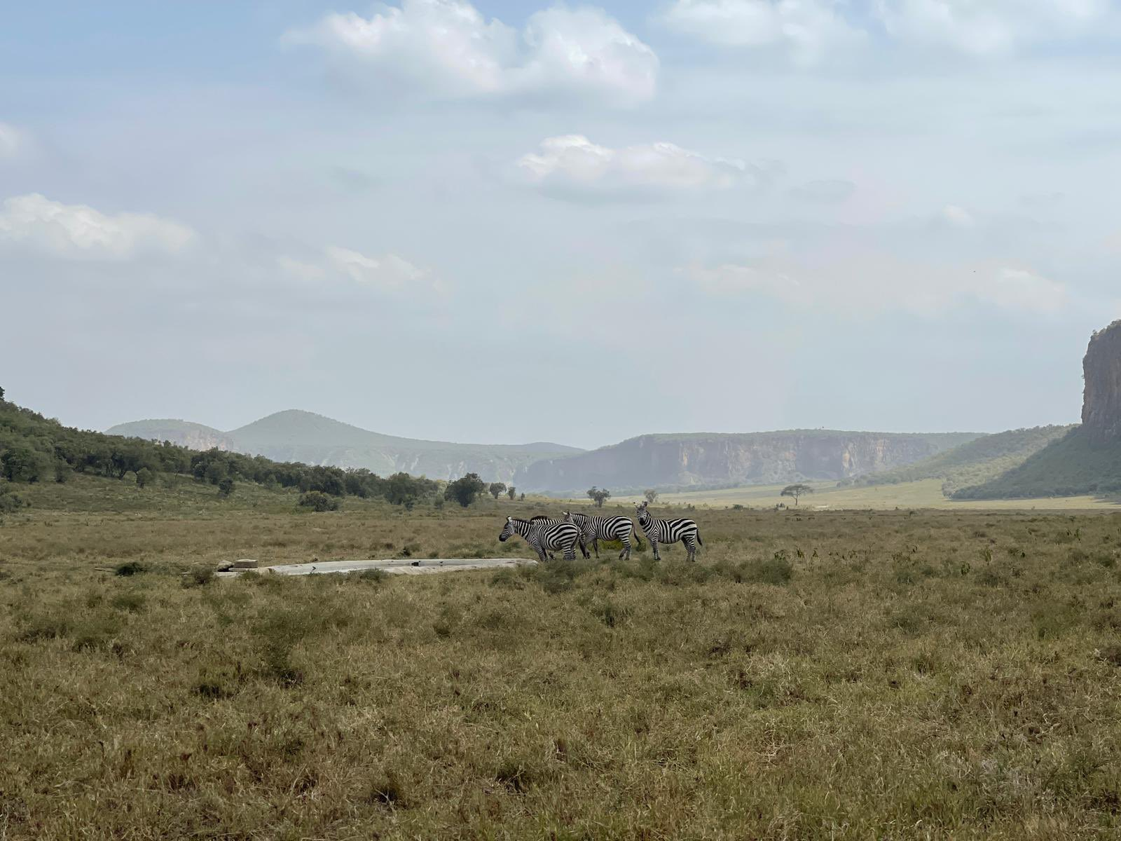 rally-safari-kenia-soymotor.jpg
