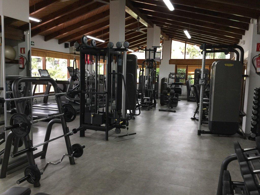 vandoorne-gimnasio-soymotor.jpg