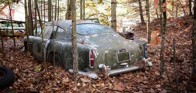aston_martin_db4_bosque.jpg